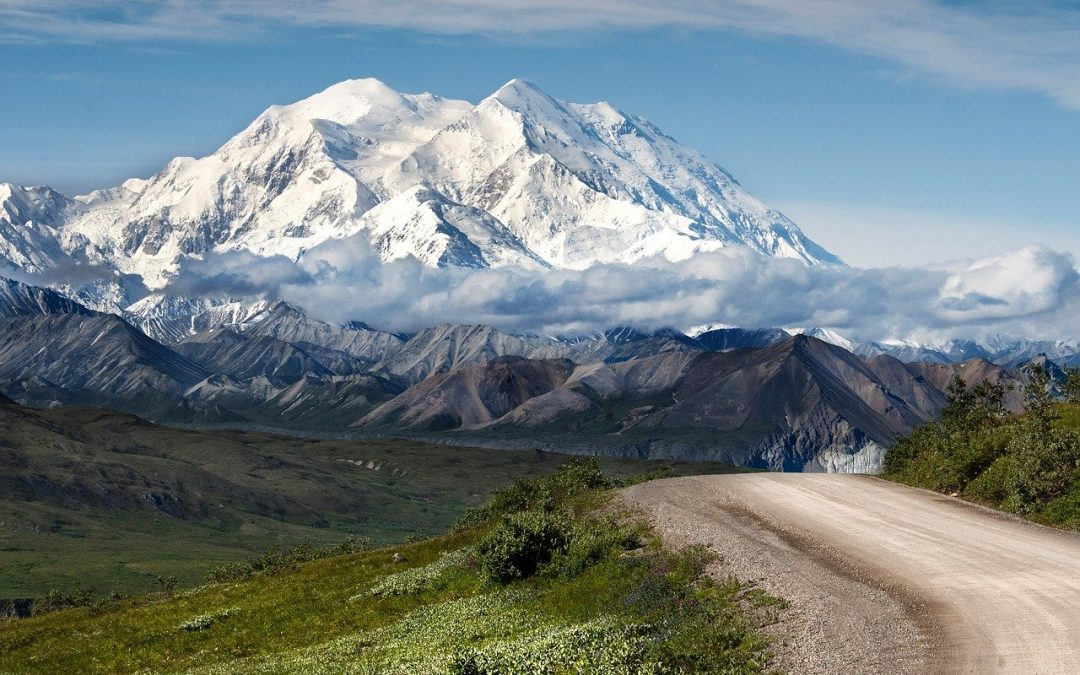 How To Drive All Through Denali During The Denali Road Lottery